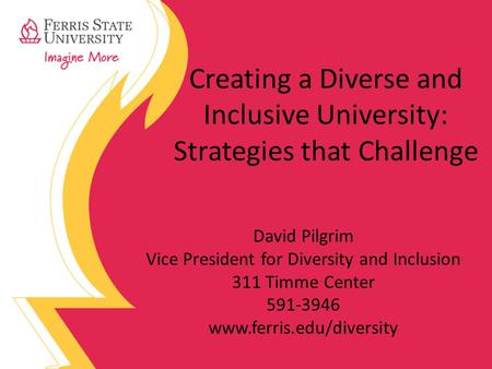 Creating a Diverse and Inclusive University: Strategies that Challenge David Pilgrim Vice President for Diversity and Inclusion 311 Timme Center 591-3946.