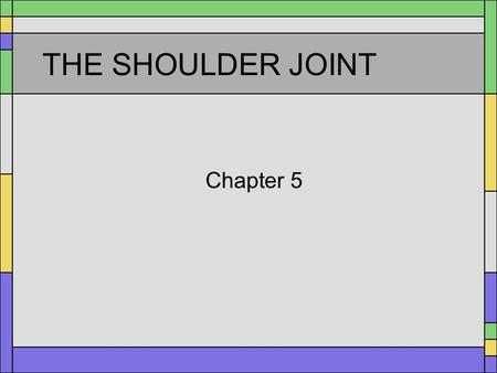 THE SHOULDER JOINT Chapter 5. Bones Humerus Scapula Clavicle.