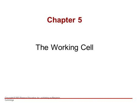 Copyright © 2003 Pearson Education, Inc. publishing as Benjamin Cummings Chapter 5 The Working Cell.
