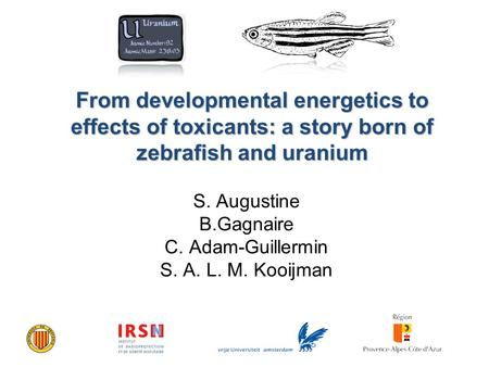 From developmental energetics to effects of toxicants: a story born of zebrafish and uranium S. Augustine B.Gagnaire C. Adam-Guillermin S. A. L. M. Kooijman.