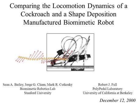 Comparing the Locomotion Dynamics of a Cockroach and a Shape Deposition Manufactured Biomimetic Robot Sean A. Bailey, Jorge G. Cham, Mark R. Cutkosky Biomimetic.