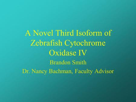A Novel Third Isoform of Zebrafish Cytochrome Oxidase IV Brandon Smith Dr. Nancy Bachman, Faculty Advisor.