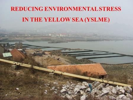 REDUCING ENVIRONMENTAL STRESS IN THE YELLOW SEA (YSLME)