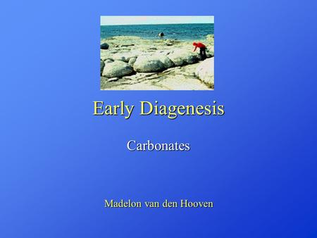 Early Diagenesis Carbonates Madelon van den Hooven.