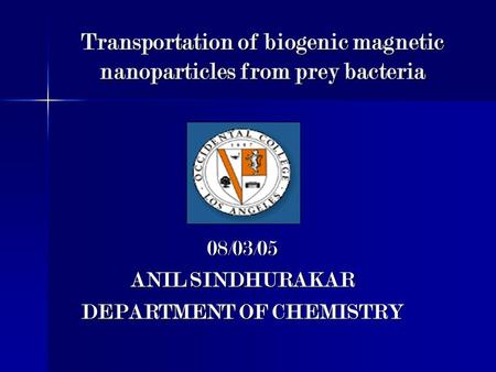 Transportation of biogenic magnetic nanoparticles from prey bacteria 08/03/05 ANIL SINDHURAKAR DEPARTMENT OF CHEMISTRY.