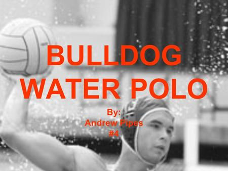 BULLDOG WATER POLO By: Andrew Pipes #4. ABOUT US We have been in existence for about 6 years We are consistently Nationally Ranked We are a club team.