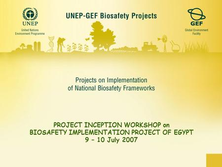 PROJECT INCEPTION WORKSHOP on BIOSAFETY IMPLEMENTATION PROJECT OF EGYPT 9 – 10 July 2007.
