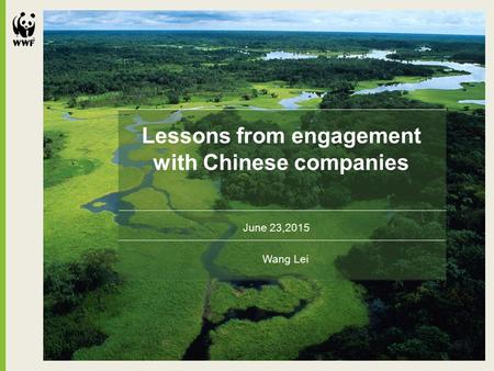 Lessons from engagement with Chinese companies June 23,2015 Wang Lei.
