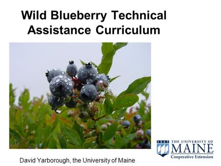 Wild Blueberry Technical Assistance Curriculum David Yarborough, the University of Maine.