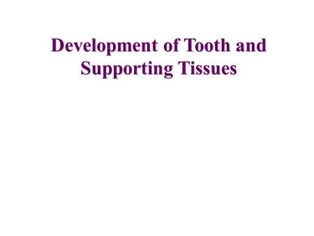 Development of Tooth and Supporting Tissues. Tooth and Associated Structures.