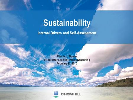 Sustainability Internal Drivers and Self-Assessment Dennis J. Stamm VP, Director Lean Enterprise Consulting February 22, 2010.