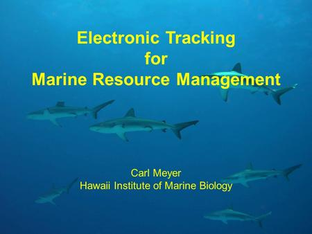 Electronic Tracking for Marine Resource Management Carl Meyer Hawaii Institute of Marine Biology.