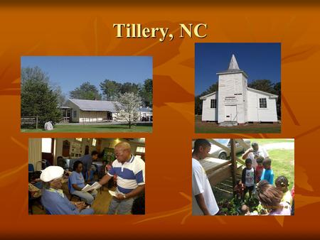 Tillery, NC. Understanding Health and Wellness Needs A Community's Perspective.