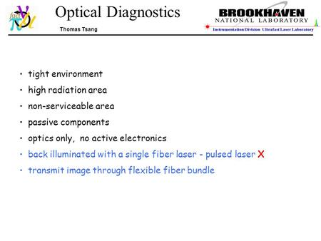 Optical Diagnostics Thomas Tsang tight environment high radiation area non-serviceable area passive components optics only, no active electronics back.
