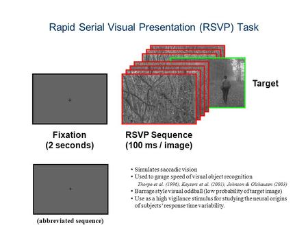 Rapid Serial Visual Presentation (RSVP) Task (abbreviated sequence) Simulates saccadic vision Used to gauge speed of visual object recognition Thorpe et.