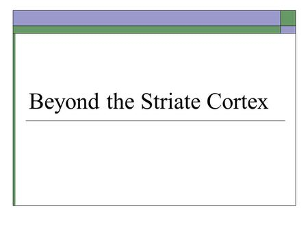 Beyond the Striate Cortex. Extrastriate Pathways  Parallel processing of visual information from the striate cortex.  Three pathways: Color processing.