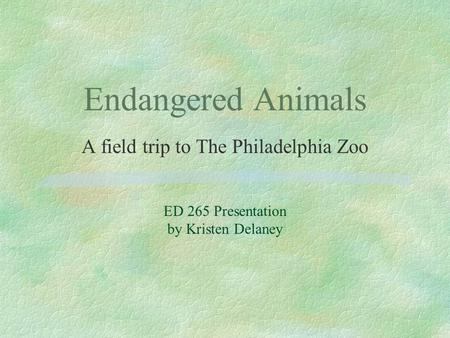 Endangered Animals A field trip to The Philadelphia Zoo ED 265 Presentation by Kristen Delaney.