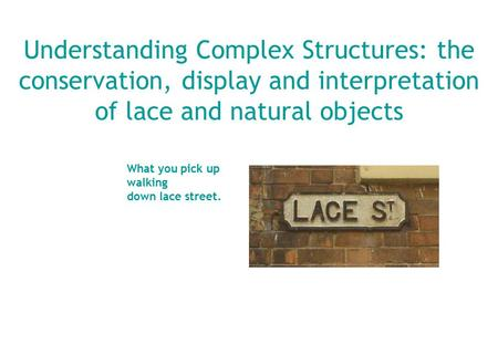 Understanding Complex Structures: the conservation, display and interpretation of lace and natural objects What you pick up walking down lace street.