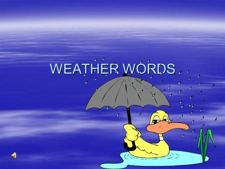 WEATHER WORDS THUNDERSTORM  A Disturbance in the Earth's atmosphere that involves lightning and thunder.