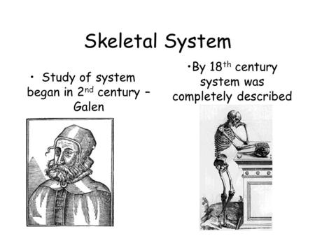 Skeletal System Study of system began in 2 nd century – Galen By 18 th century system was completely described.