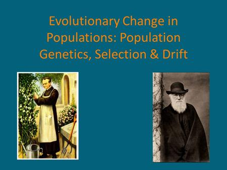 Evolutionary Change in Populations: Population Genetics, Selection & Drift.