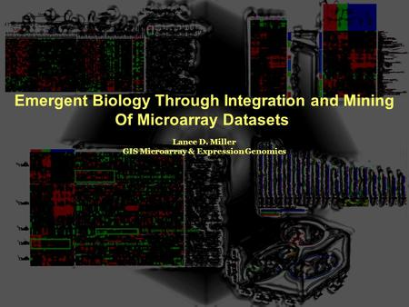 Emergent Biology Through Integration and Mining Of Microarray Datasets Lance D. Miller GIS Microarray & Expression Genomics.