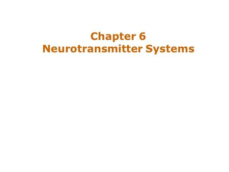 Chapter 6 Neurotransmitter Systems. Introduction Three classes of neurotransmitters –Amino acids, amines, and peptides Ways of defining particular transmitter.