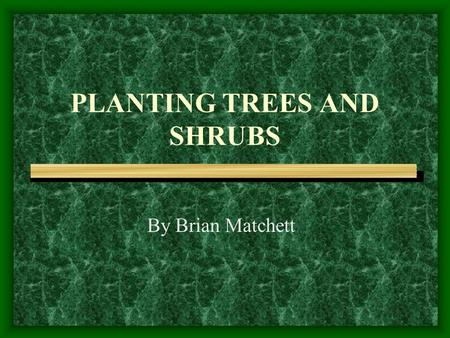 PLANTING TREES AND SHRUBS By Brian Matchett. How do Trees and Shrubs Help Us? Provide shade Provide wildlife habitat Provide food for wildlife Provide.