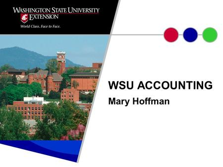 Mary Hoffman WSU ACCOUNTING. Accounting systems reflect an entity's reporting needs. WSU required to report back to funders. Accounting system designed.