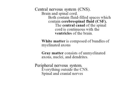 Central nervous system (CNS). Brain and spinal cord. Both contain fluid-filled spaces which contain cerebrospinal fluid (CSF). The central canal of the.