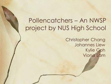 Pollencatchers – An NWSP project by NUS High School Christopher Chang Johannes Liew Kylie Goh Viona Lam.