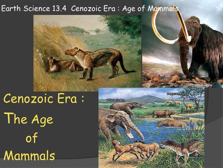 Earth Science 13.4 Cenozoic Era : Age of Mammals Cenozoic Era : T he Age of Mammals.