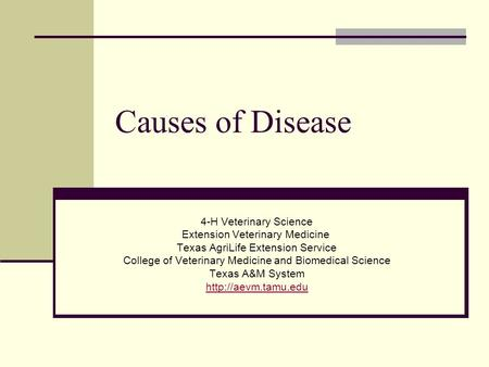 Causes of Disease 4-H Veterinary Science Extension Veterinary Medicine Texas AgriLife Extension Service College of Veterinary Medicine and Biomedical Science.