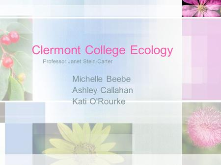 Clermont College Ecology Michelle Beebe Ashley Callahan Kati O'Rourke Professor Janet Stein-Carter.
