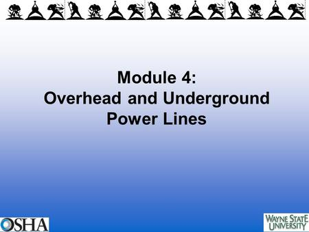 Module 4: Overhead and Underground Power Lines. Overview of Module 4 Background on power lines Hazards of overhead and underground power lines Injury.
