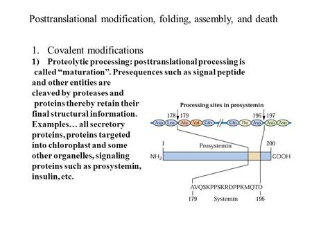 Posttranslational modification, folding, assembly, and death 1.Covalent modifications 1)Proteolytic processing: posttranslational processing is called.