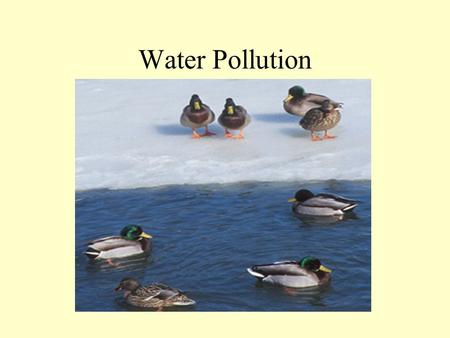 Water Pollution. Distribution of Water Reservoirs Oceans 97% Atmosphere 0.01% Rivers, Lakes, and Inland Seas 0.141% Soil Moisture 0.0012% Ground Water.