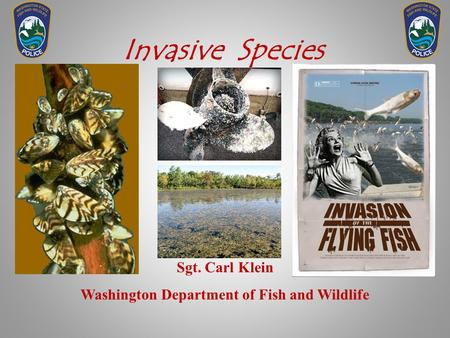 Invasive Species Sgt. Carl Klein Washington Department of Fish and Wildlife.