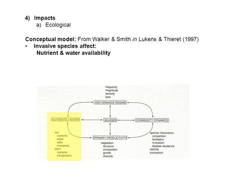 4)Impacts a)Ecological Conceptual model: From Walker & Smith in Lukens & Thieret (1997) Invasive species affect: Nutrient & water availability.