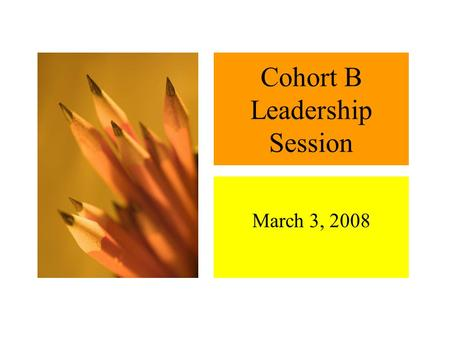 Cohort B Leadership Session March 3, 2008 Agenda.