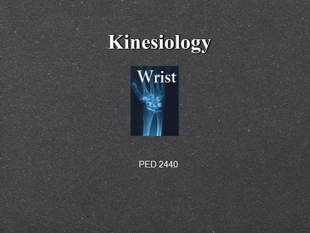 KinesiologyKinesiology PED 2440. Muscles KEY POINTS: 1. Muscles only PULL on bones 2. Muscles only act on those joints which they cross 3. A muscle.