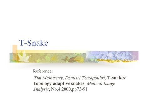 T-Snake Reference: Tim McInerney, Demetri Terzopoulos, T-snakes: Topology adaptive snakes, Medical Image Analysis, No.4 2000,pp73-91.