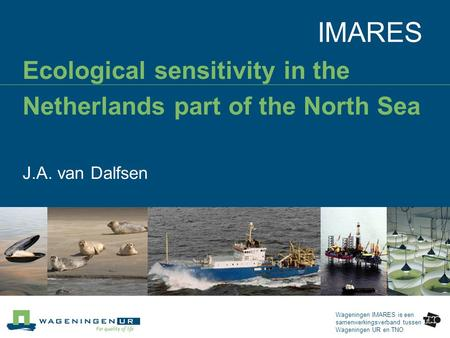 Wageningen IMARES is een samenwerkingsverband tussen Wageningen UR en TNO IMARES Ecological sensitivity in the Netherlands part of the North Sea J.A. van.