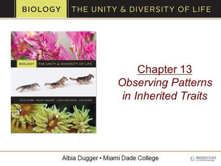 Albia Dugger Miami Dade College Chapter 13 Observing Patterns in Inherited Traits.