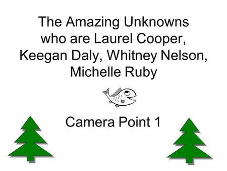 The Amazing Unknowns who are Laurel Cooper, Keegan Daly, Whitney Nelson, Michelle Ruby Camera Point 1.