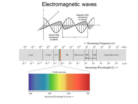Electromagnetic waves. Electronic transitions Vibrational fine structure.