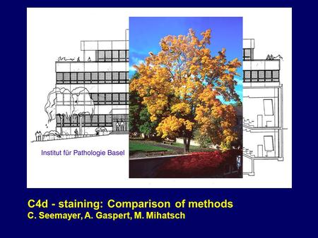 C4d - staining: Comparison of methods C. Seemayer, A. Gaspert, M. Mihatsch.