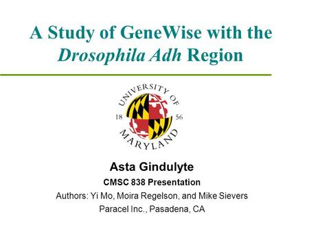 A Study of GeneWise with the Drosophila Adh Region Asta Gindulyte CMSC 838 Presentation Authors: Yi Mo, Moira Regelson, and Mike Sievers Paracel Inc.,