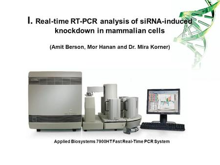 Applied Biosystems 7900HT Fast Real-Time PCR System I. Real-time RT-PCR analysis of siRNA-induced knockdown in mammalian cells (Amit Berson, Mor Hanan.