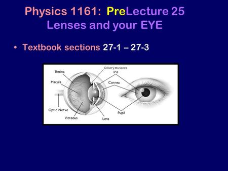 Textbook sections 27-1 – 27-3 Physics 1161: PreLecture 25 Lenses and your EYE Ciliary Muscles.